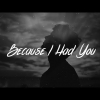 Because I Had You - Shawn Mendes