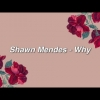 Shawn Mendes - Why